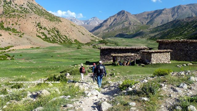 Trekking M'goun Maroc