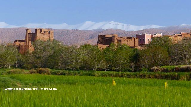 Trek Ait Bouguemez et gorges du M'goun Maroc