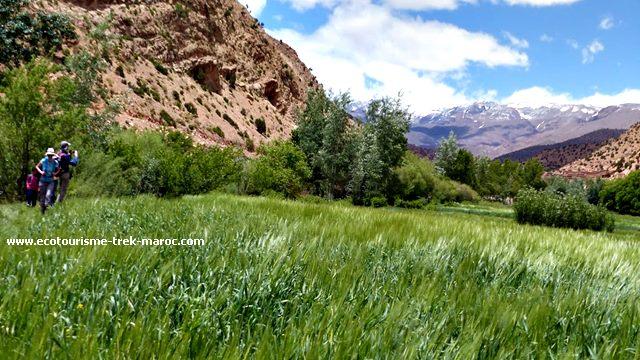 Trekking vallée des roses Maroc