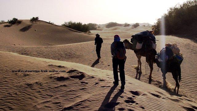 Trek et randonnée désert Maroc
