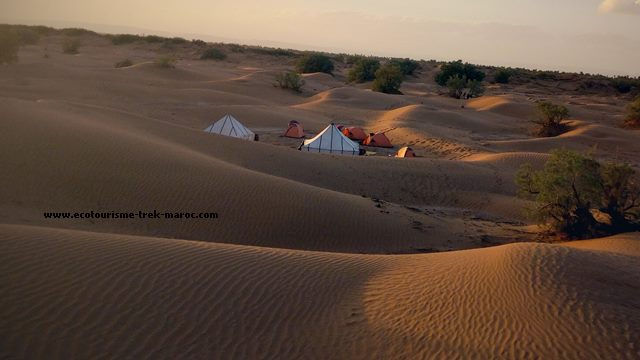 excursion dans le desert marocain